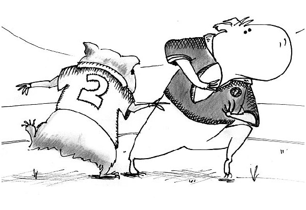 Guinea Pig Rugby cartoon