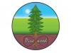 Pinewood TMS logo